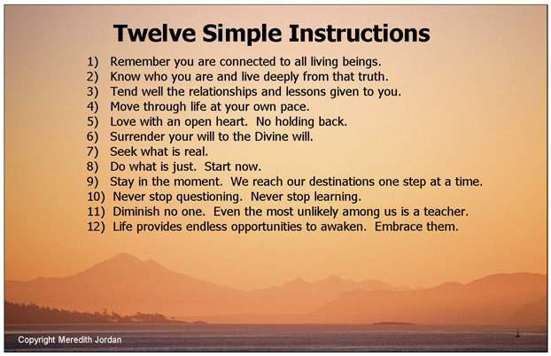 Twelve Simple Instructions